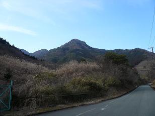 高星山.JPG