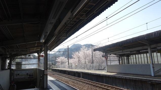 f46.jpg