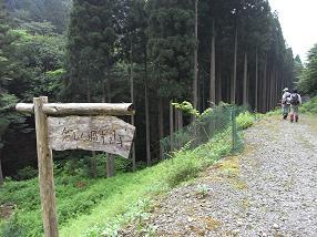 fuji36.jpg