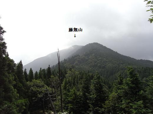 fuji8.jpg