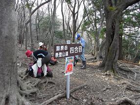 fujiwara36.jpg